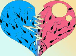 Сперма в сердце